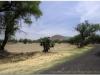 20130430-meksyk-teotihuacan-16