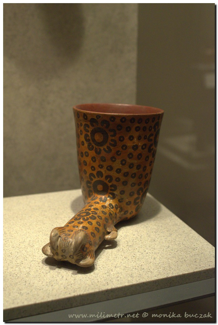 20130516-meksyk-meksyk-muzeum-antropologiczne-62