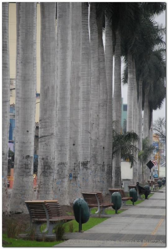 peru-20070722-lima-41