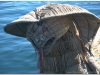 peru-20070802-titicaca-66