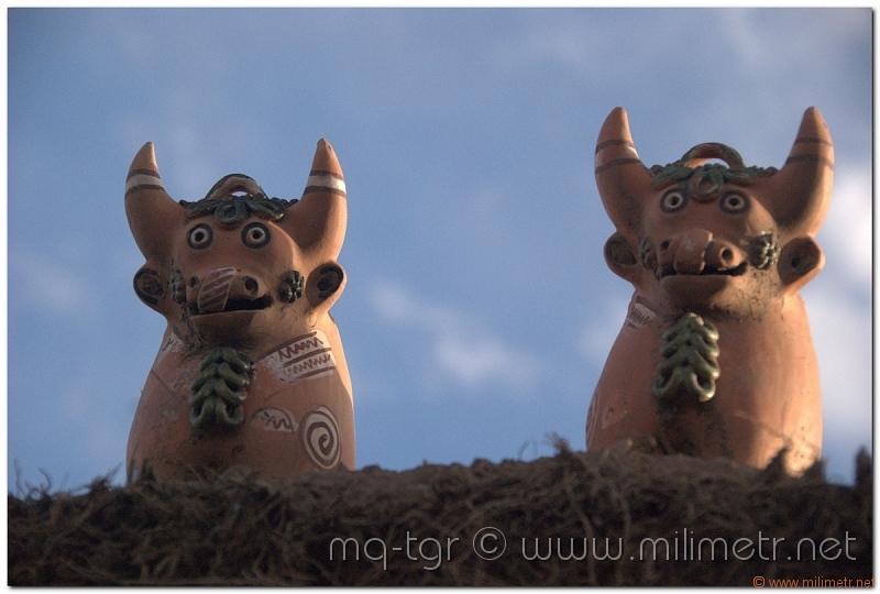 peru-20070731-puno-sillustani-69