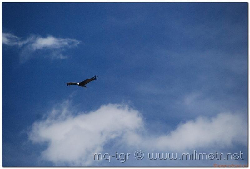 peru-20070805-arequipa-colca-132