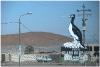 peru-20070806-arequipa-nazca-27