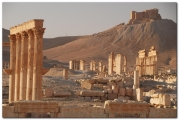 syria-2010-part2-palmyra-29