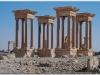syria-2010-part2-palmyra-16