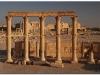 syria-2010-part2-palmyra-30