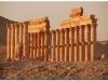 syria-2010-part2-palmyra-35