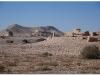syria-2010-part2-palmyra-6