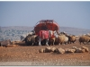 syria-2010-4-aleppo-i-okolice-1-8