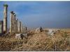 syria-2010-4-aleppo-i-okolice-6-apamea-1