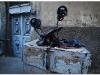 syria-2010-part-6-23
