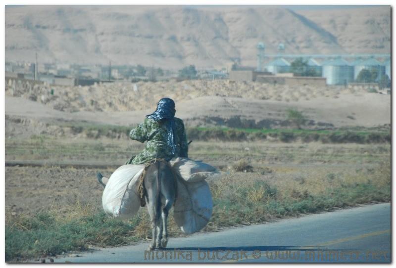 syria-2010-part3-eufrat-29