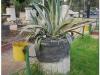 20101030-syria-damaszek-40