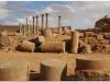 20101031-syria-bosra-139