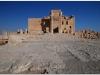 20101107-syria-palmyra-116