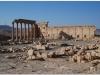 20101107-syria-palmyra-138