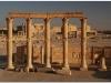 20101107-syria-palmyra-205