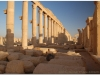 20101107-syria-palmyra-208