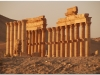 20101107-syria-palmyra-231