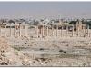 20101107-syria-palmyra-57
