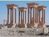 20101107-syria-palmyra-66