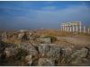 20101113-syria-4-apamea-18