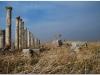 20101113-syria-4-apamea-7