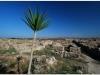 20101117-syria-latakia-ugarit-49