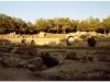 tunezja-20010507-tunis-kartagina