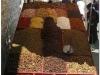 20060805-lhasa-12