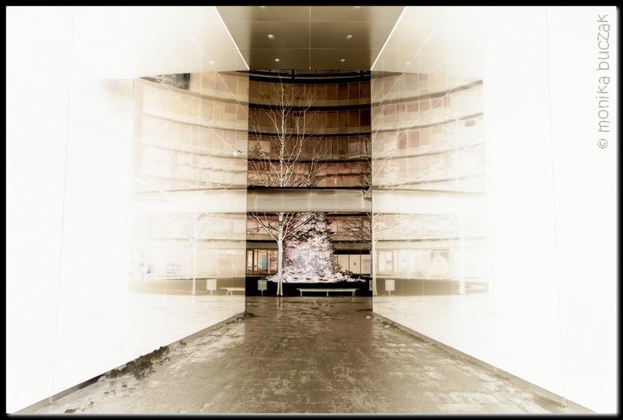 20110123-warszawa-srodmiescie-20110123-pl-pilsudskiego-19neg