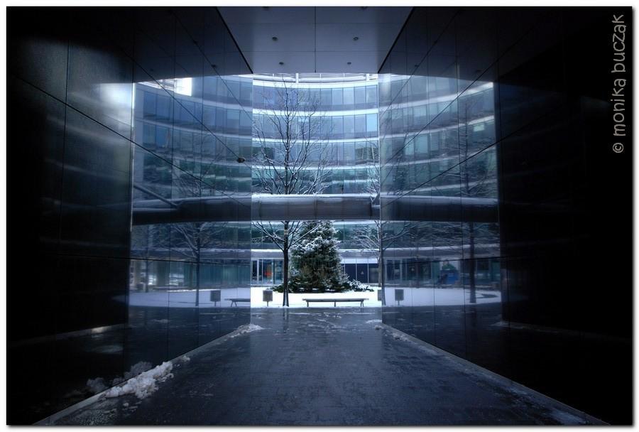 20110123-warszawa-srodmiescie-20110123-pl-pilsudskiego-21