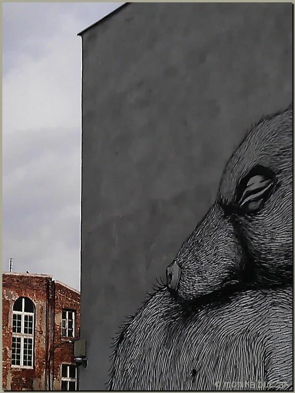 20110918-nowy-swiat-pasa