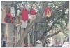 wietnam-hanoi-3-9.jpg