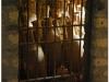 italia20080526-pompei-herculaneum-oplontis-8