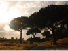 italia20080529-appia-92