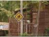 kambodza-20081120-siem-reap-2